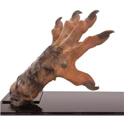 rob bottin created werewolf hand from the howling. Black Bedroom Furniture Sets. Home Design Ideas