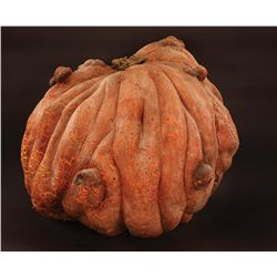 LARGE FOAM RUBBER PUMPKIN FROM PUMPKINHEAD