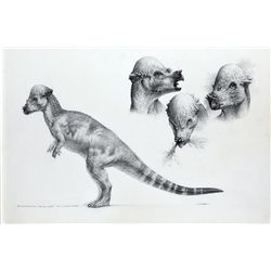 ORIGINAL CONCEPT ARTWORK OF PACHYCEPHALOSAURUS FROM THE LOST WORLD: JURASSIC PARK II