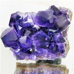 605ct Deep Color Uruguay Amethyst Crystal Cluster (MIN-001207)