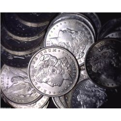 Lot 10 Morgan UNCIRCULATED Dollars