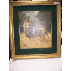 PROUD LION #1/850 DOUBLE SIGNED FINE ART PRINT BY SIMON COMBES, NICELY FRAMED