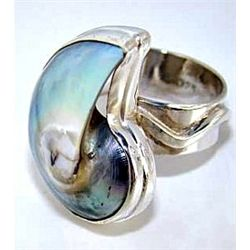 Silver and Nautilus Shell Ring