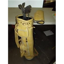 Ladies Gold Clubs (Nancy Lopez) Set of Nancy Lopez Ladies Gold Clubs Pitching Wedge, 3-4-5-6-7-8-9-I