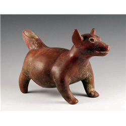 Fine Colima Dog, Pre-Columbian West Mexico