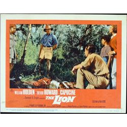 The Lion Original Lobby Card Africa Poster 1962