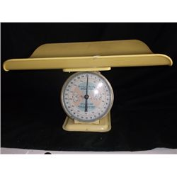American Family Nursery Scale