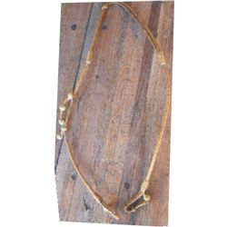 Rawhide split ear headstall