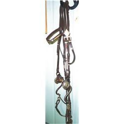 Silver bridle with Victor headstall, silver reins