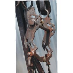 Bridle with Buermann rearing horse bit