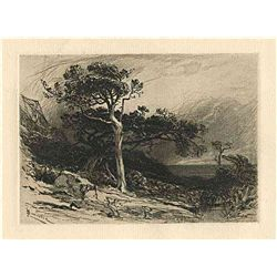 "Smillie ""Old Cedars Off The Coast Of Maine"""