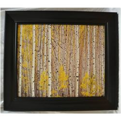 """Aspen Grove Colorado"""