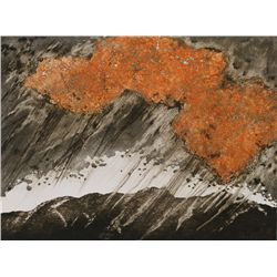 Yannick Ballif, L'Orange, Aquatint Etching