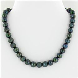 Scarce Black Saltwater Pearl Necklace (JEW-250G)