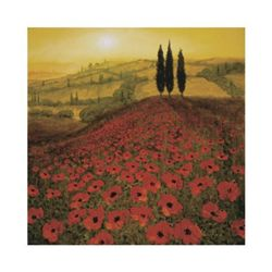 Steve Thoms Poppies Art Print