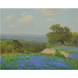 Porfirio Salinas - Poppies and Bluebonnets