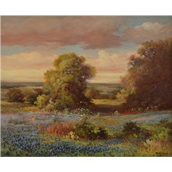 Robert Wood - Texas Hill Country Bluebonnets