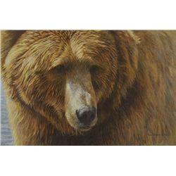 Robert Bateman - Grizzly Head Portrait