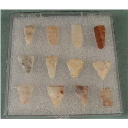 12 Small Indian Bird Point Arrowheads Set in Case