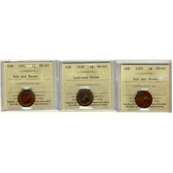 Cent 1929, 1930, 1931, all ICCS MS-6; Red and Brown. Lot of 3 coins.