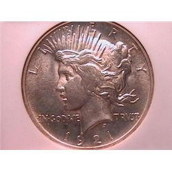 1921 Peace Dollar MS63 NGC