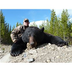 5-day black bear hunt for one hunter in Prince George, Canada - includes trophy fee