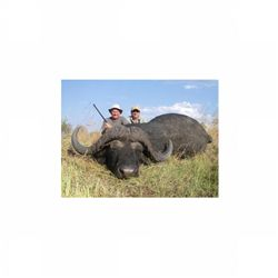 7-day buffalo and plains game hunt for one hunter in Zimbabwe