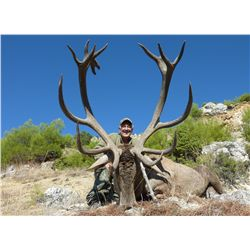 7-day Mid-Eastern red stag hunt for one hunter in Turkey - includes trophy fee