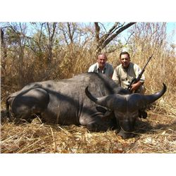 10-day Cape buffalo and plains game hunt for one hunter in Maasailand, Tanzania