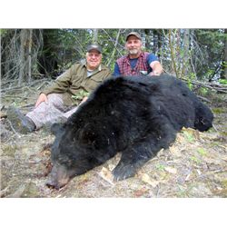 8-day black bear hunt for one hunter in the Yukon territory of Canada - includes trophy fees for two