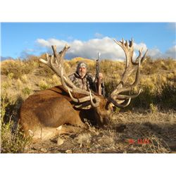 5-day red stag hunt for one hunter and one non-hunter in Patagonia, Argentina - includes trophy fees