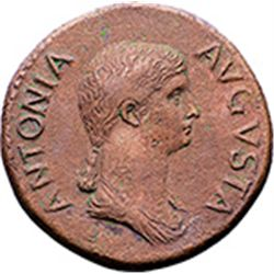 Antonia Minor, mother of Claudius (Augusta 37 and 41).  Dupondius, 41-42. Obv. ANTONA AVGVSTA. Drape