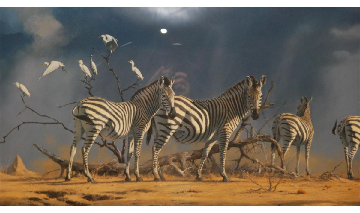 zebra oil painting - photo #39