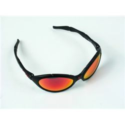 Ed TV Ray Pekurny (Woody Harrelson) Sunglasses Props
