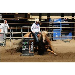 First Down French - 2005 Palomino AQHA Stallion