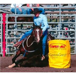 Western Perks - 2001 Blood Bay AQHA Stallion - Horse Auctions Live