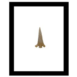 Framed Arrowhead