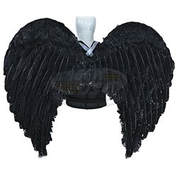 Wizards of Waverly Place (television) - Justin Russo's Angel Wings (David Henrie)