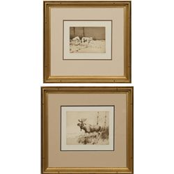 Michael B. Coleman, two etchings