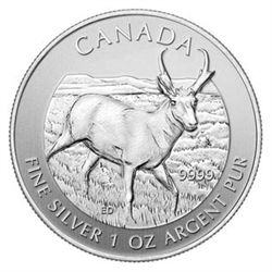 Canadian Silver 1 oz Antelope 2013