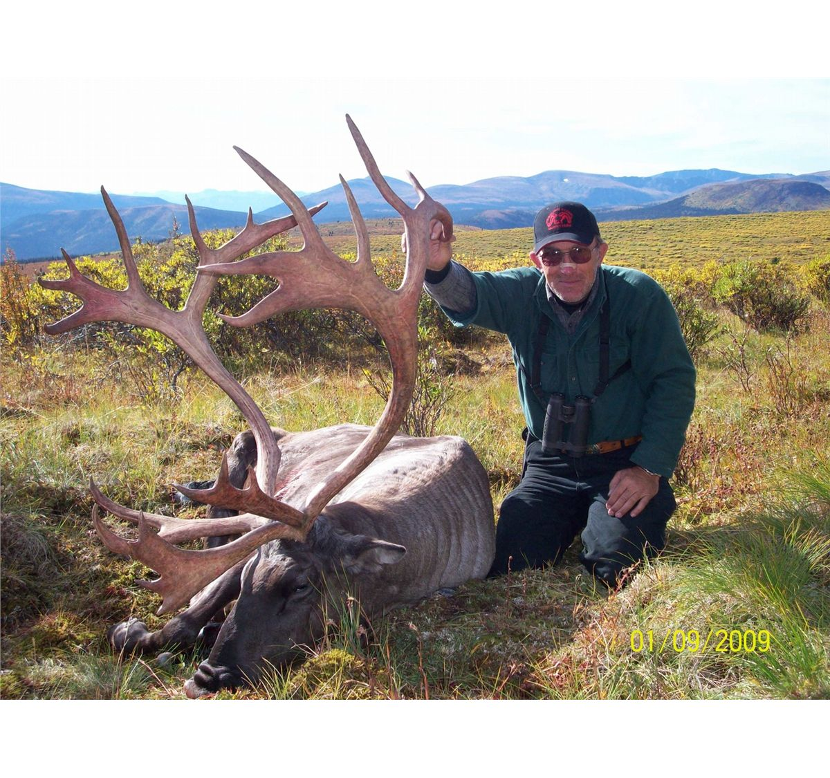 World Record Caribou