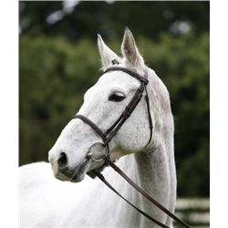 EM FAIR LILY SF - 2001 Grey Hanoverian Mare - 16.2hh