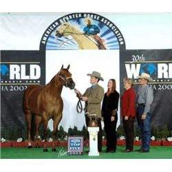 She Is Wincredible - 2001 Sorrel AQHA Mare