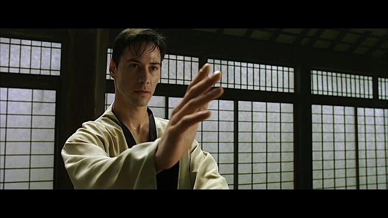 Image result for the matrix neo martial arts