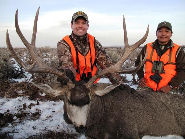 Navajo Nation Special Rocky Mountain Mule Deer Tag ...