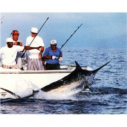 6-day/7-night Panama Blue Water Fishing Trip for Two Anglers