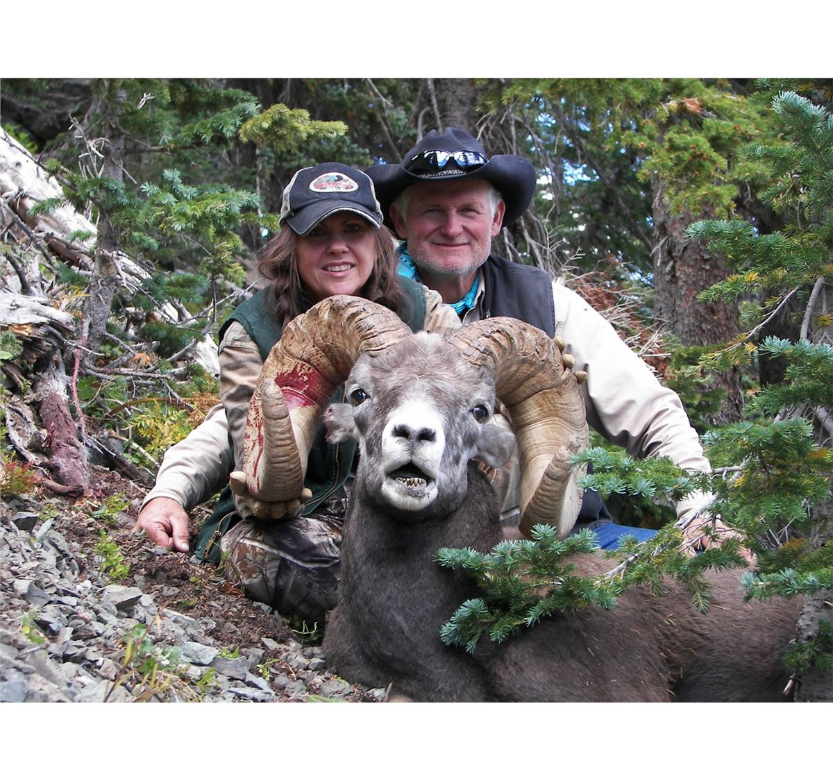 New mexico rocky mountain bighorn sheep permit new mexico for New mexico department of game and fish