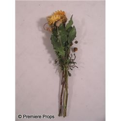 Seeking a Friend for the End of the World Flowers