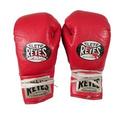 Southpaw Hoppy (Skylan Brooks) Gloves Movie Props