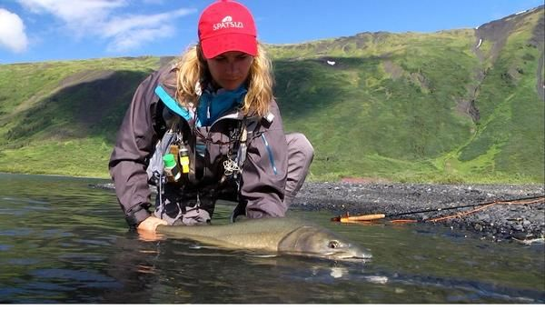 8 day british columbia lodge based fly out fly fishing for British columbia fishing lodges